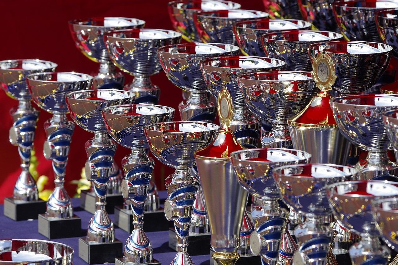 trophies-710169_1280